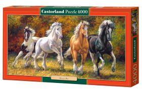 Born to Run (Puzzle 4000 pezzi Castorland) (Puzzle)
