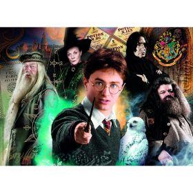 Puzzle 500 Pezzi Clementoni Harry Potter B| Puzzle Personaggi
