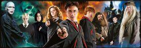 Puzzle 1000 Pezzi Clementoni Panorama Harry Potter | Puzzle Personaggi