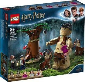LEGO 75967 La foresta proibita l'incontro con la Umbridge LEGO Harry Potter su arsludica.com