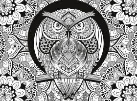 Puzzle 500 pezzi 3D Colour Therapy Owl Clementoni su ARSLUDICA.com
