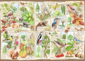 Puzzle Composizioni 1000 pezzi Ravensburger Alberi meravigliosi