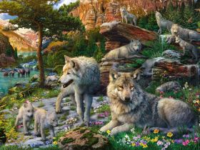 Puzzle 1500 Pezzi Ravensburger Lupi In Primavera | Puzzle Animali