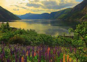 Puzzle 1000 Pezzi Ravensburger Fiordo in Norvegia | Puzzle Paesaggi
