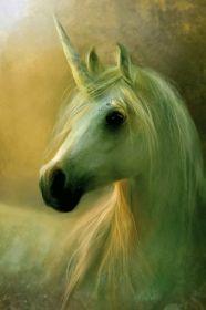 Unicorno (Puzzle 1000 pezzi Schmidt)