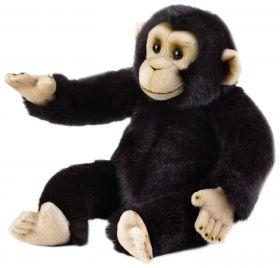 Scimpanzè 36 cm (Peluche National Geographic)