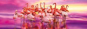 Puzzle Panorama 1000 pezzi Clementoni Flamingo Dance