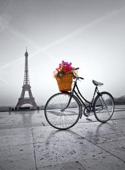 Puzzle Fotografia 500 pezzi Clementoni Romantic Promenade in Paris