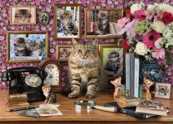 Puzzle Animali 1000 Pezzi Ravensburger Il Mio Piccolo Gatto