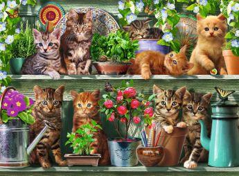 Puzzle Animali 500 pezzi Ravensburger Gatto sullo Scaffale