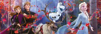 Puzzle Disney Panorama 1000 pezzi Clementoni Frozen 2 su arsludica.com