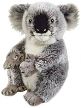 Koala 26 cm (Peluche National Geographic)